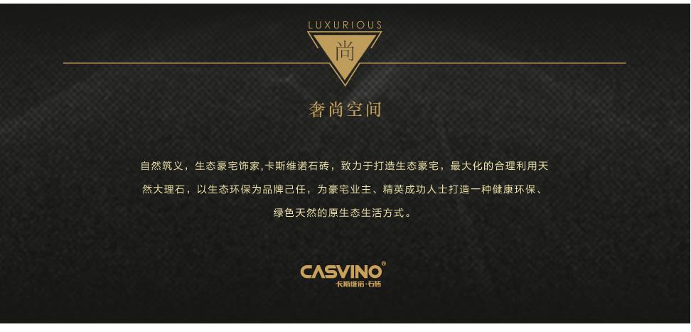 卡斯维诺 直板 CS322 04